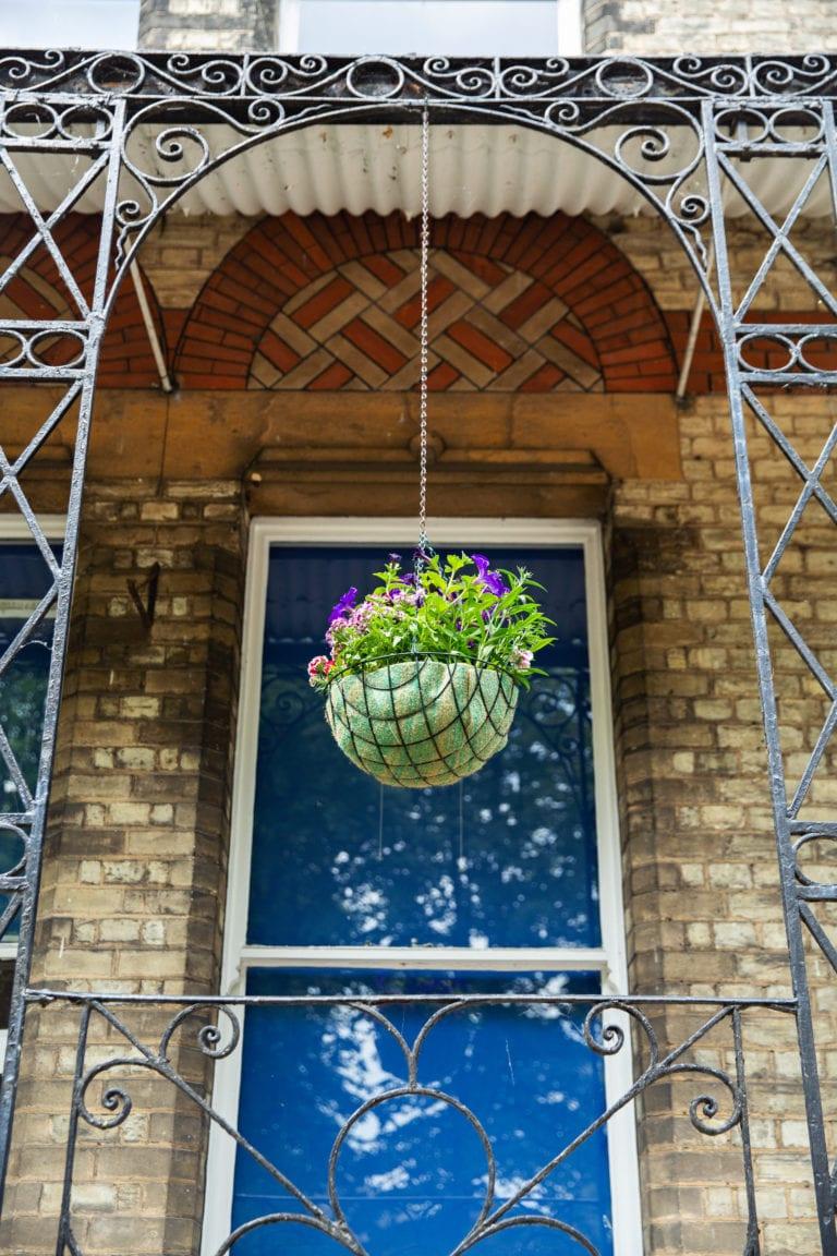 Flower pot hanging outside Studio Cambridge