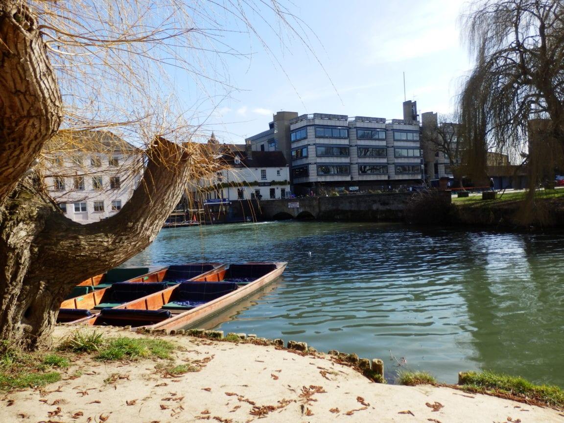 Punts moored on River Cam